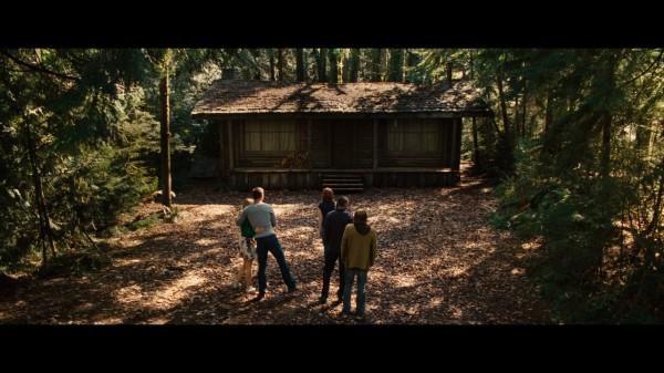 cabinwoods1356-600x337