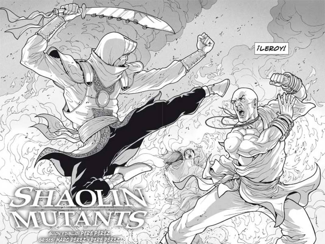 Shaolin Mutants grises