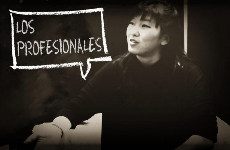 Los Profesionales: Quan Zhou Wu (HCC 2017)
